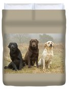 Three Kinds Of Labradors Duvet Cover