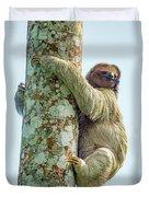 Three-toed Sloth Bradypus Tridactylus Duvet Cover
