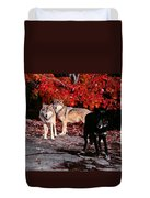 Timber Wolves Under  A Red Maple Tree Duvet Cover