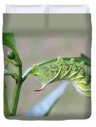 Tobacco Hornworm Duvet Cover