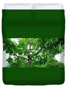 Trees In A Park, Adams Park, Wheaton Duvet Cover