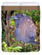 Tricolored Heron Egretta Tricolor Duvet Cover