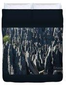 Tsingy De Bemaraha Madagascar Duvet Cover