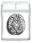 Vesalius: Brain Duvet Cover