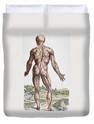 Vesalius: Muscles, 1543 Duvet Cover