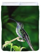 Violet Sabre-wing Hummingbird Duvet Cover by Michael and Patricia Fogden
