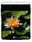 Exotic Colors - A Soft Coral Waterlily Duvet Cover