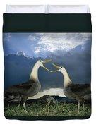 Waved Albatross Courtship Dance Duvet Cover