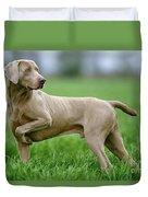 Weimaraner Dog Duvet Cover