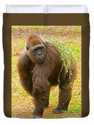Western Lowland Gorilla Female Duvet Cover