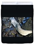 White Moray Eel Duvet Cover