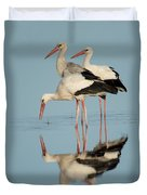 White Storks Ciconia Ciconia In A Lake Duvet Cover
