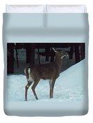 White Tail Deer Duvet Cover by Brenda Brown