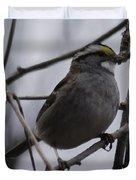 White-throated Sparrow Duvet Cover