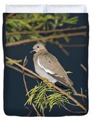 White-winged Dove Duvet Cover