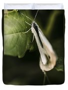 White Winged Moth Insect On A Green Tree Leaf Duvet Cover