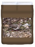 Whitetipped Dove Duvet Cover