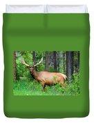 Wild Bull Elk Duvet Cover