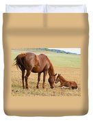 Wild Horse Mother And Foal Duvet Cover