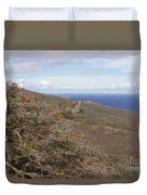 Wiliwili Flowers - Erythrina Sandwicensis - Kahikinui Maui Hawaii Duvet Cover
