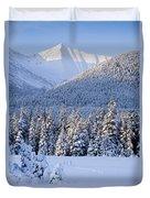 Winter Scenic Of Snowcovered Spruce Duvet Cover