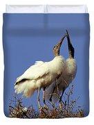 Wood Stork Courtship Display Duvet Cover