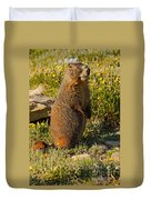 Yellow Bellied Marmot On Alert In  Rocky Mountain National Park Duvet Cover
