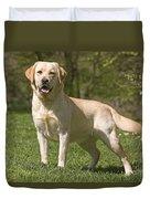 Yellow Labrador Retriever Duvet Cover
