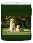Yellow Labrador Retrievers Duvet Cover