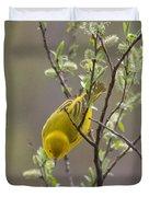 Yellow Warbler -1 Duvet Cover