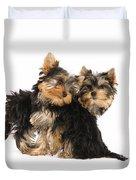 Yorkie Puppies Duvet Cover