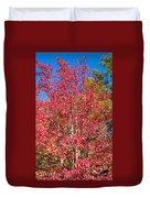 Autumn Color Duvet Cover
