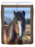 New Forest Pony Duvet Cover