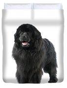 Newfoundland Dog Duvet Cover