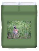 Pronghorn Antelope Portrait Duvet Cover