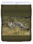 Patagonia Grey Fox Duvet Cover