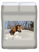 Red Fox Duvet Cover