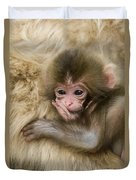 Baby Snow Monkey, Japan Duvet Cover