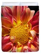 Dahlia From The Showpiece Mix Duvet Cover