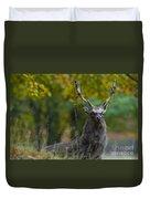 110307p070 Duvet Cover