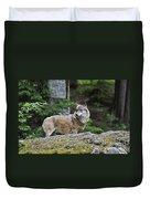 110613p022 Duvet Cover