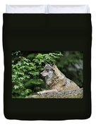 110613p024 Duvet Cover