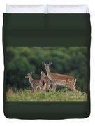 110613p159 Duvet Cover