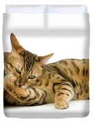 Bengal Brown Spotted Tabby Duvet Cover