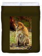 Monkey Duvet Cover