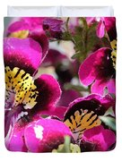 Schizanthus From The Hit Parade Mix Duvet Cover