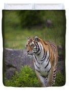 Siberian Tiger, China Duvet Cover