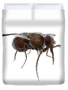 Tsetse Fly Duvet Cover