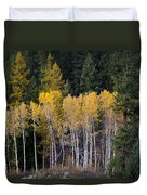 Guardians Of Trestle Creek  -  141102a-138 Duvet Cover