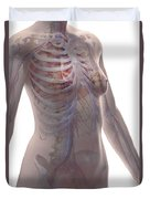 The Cardiovascular System Female Duvet Cover